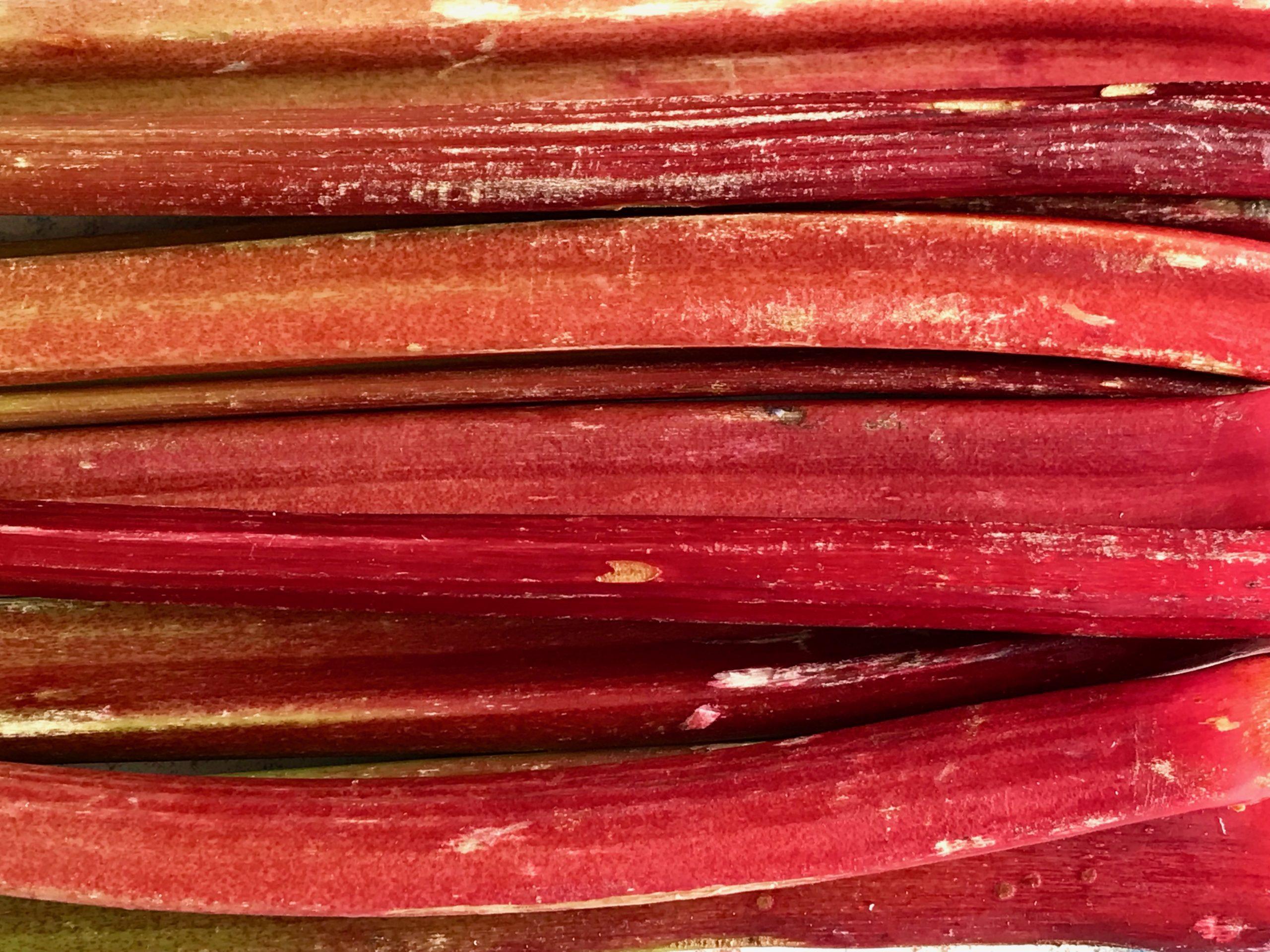 Rhubarb_vegan_recipe.jpg
